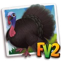turkey adult spanishblack 200.png